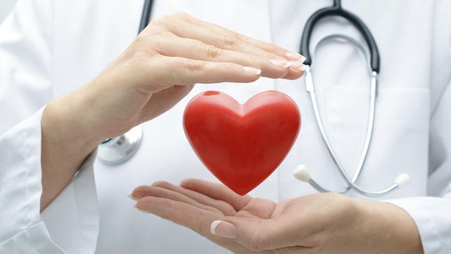 fakrori-rizika--srce-1